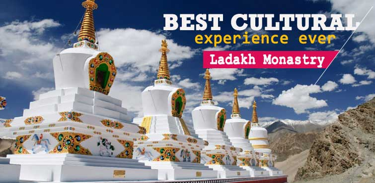 Ladakh Monastry - Best Cultural Experience